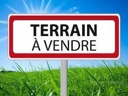 Terrain Agenc…