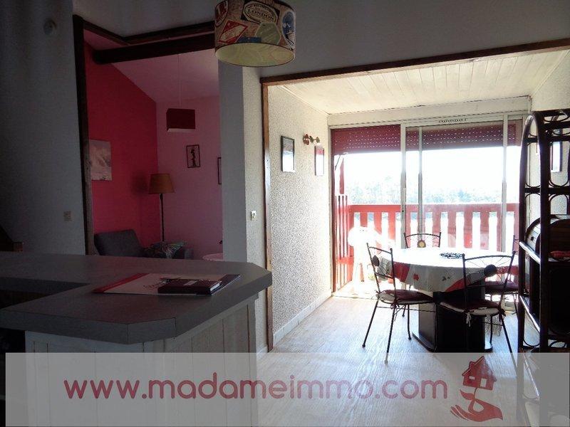 Appartement, 41,5 m² VIEUX…