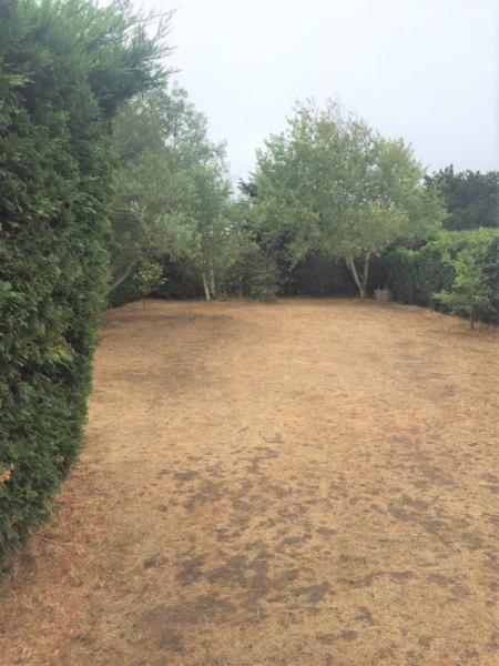 Terrain, 1 000 m² Entre…