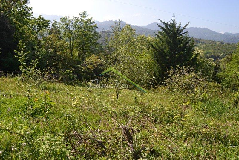 Terrain, 1 300 m² Situé…