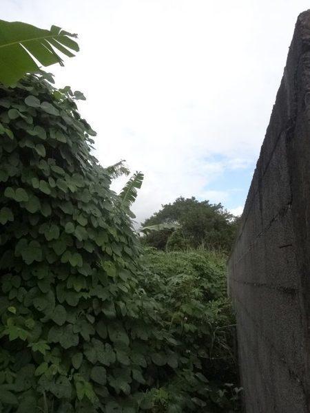 Terrain, 1 327 m² terra…