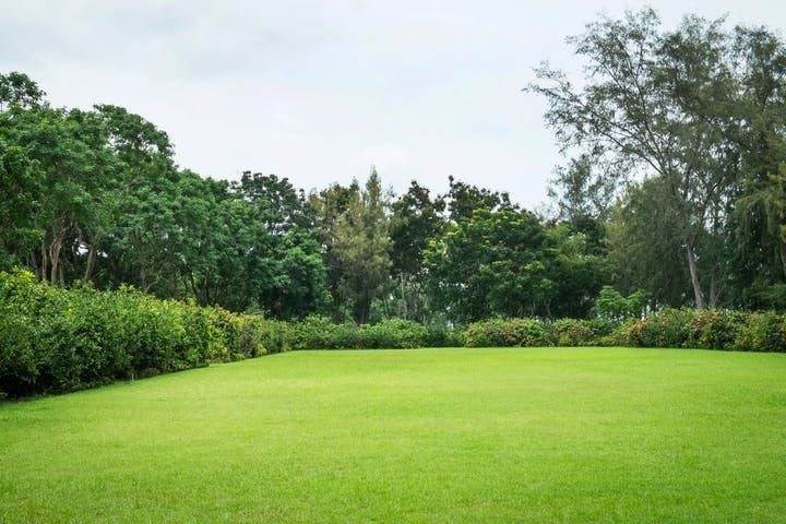 Terrain à bâtir, 2 630 m² Terra…